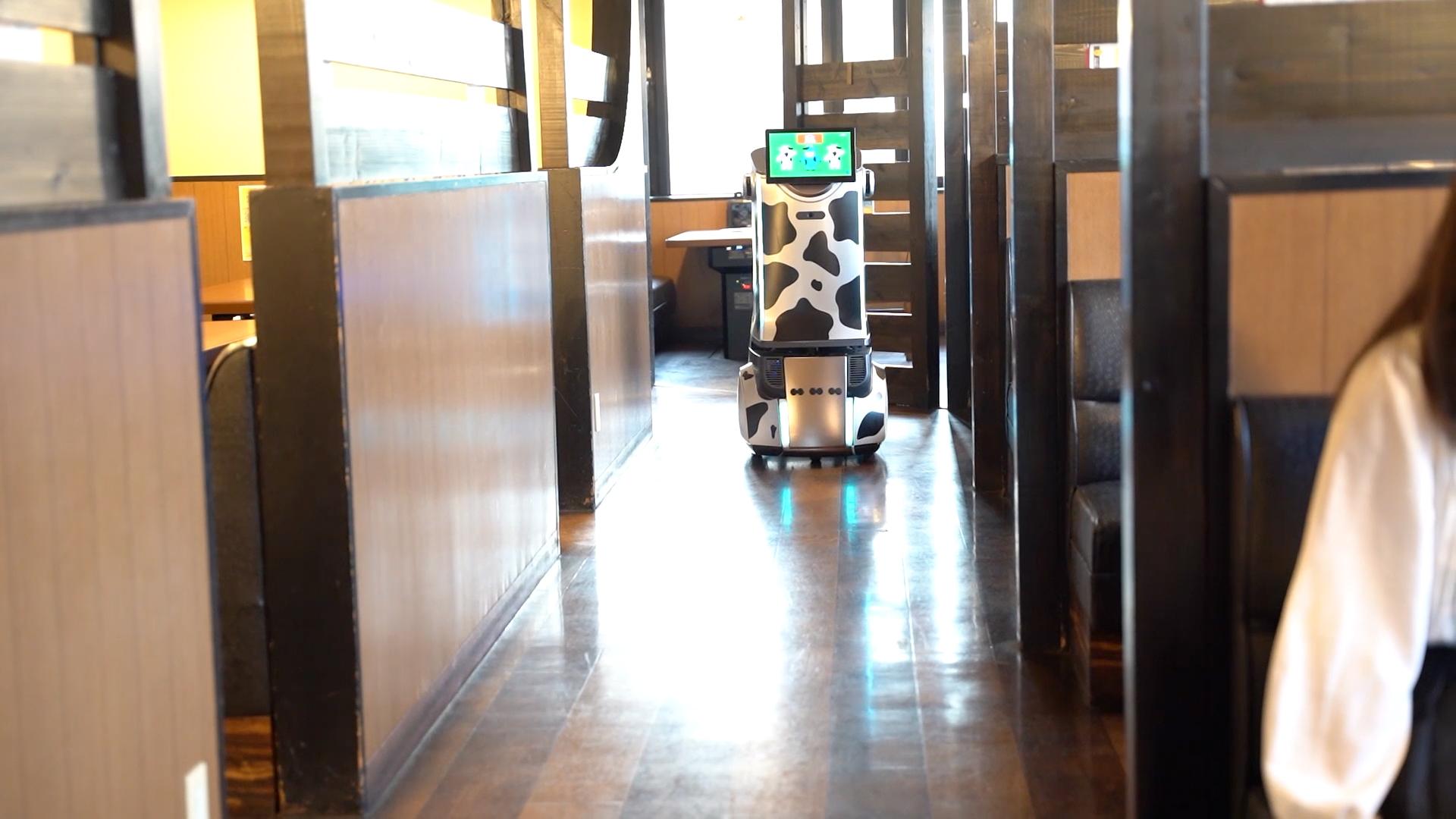 AIM ROBOT SAKURA